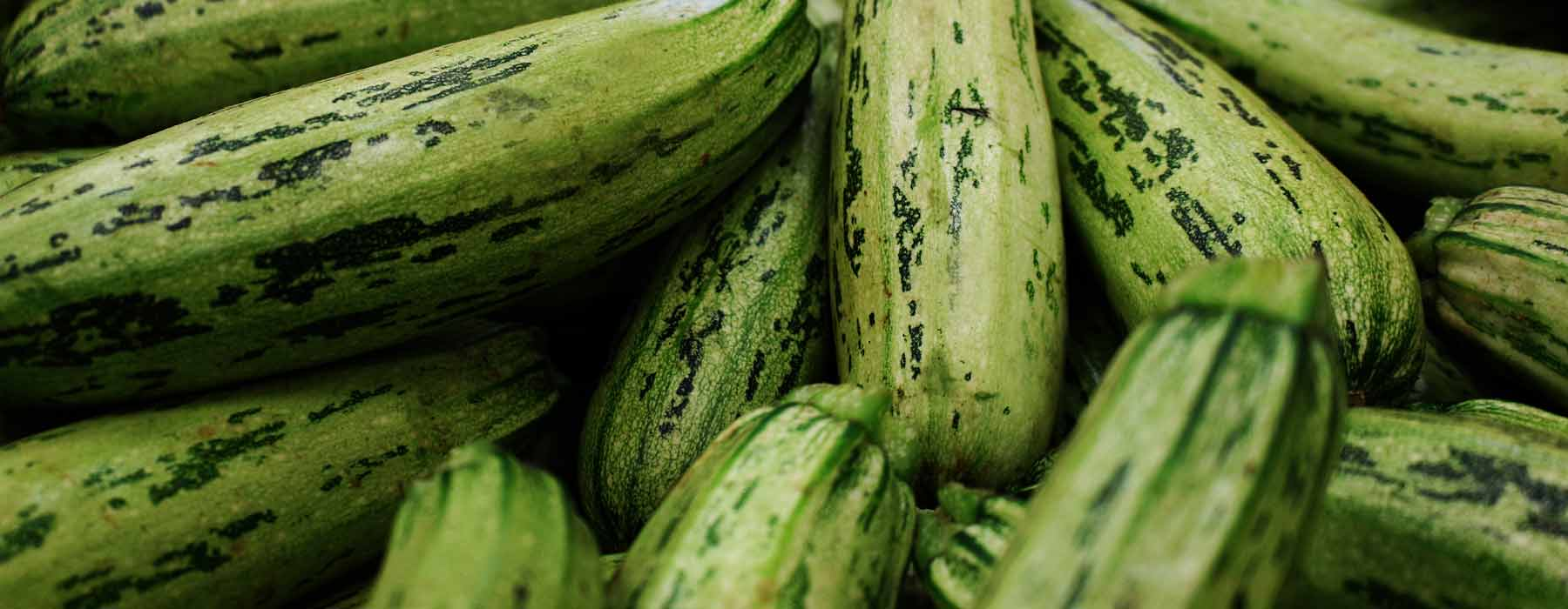 courgettes, also known as zucchini