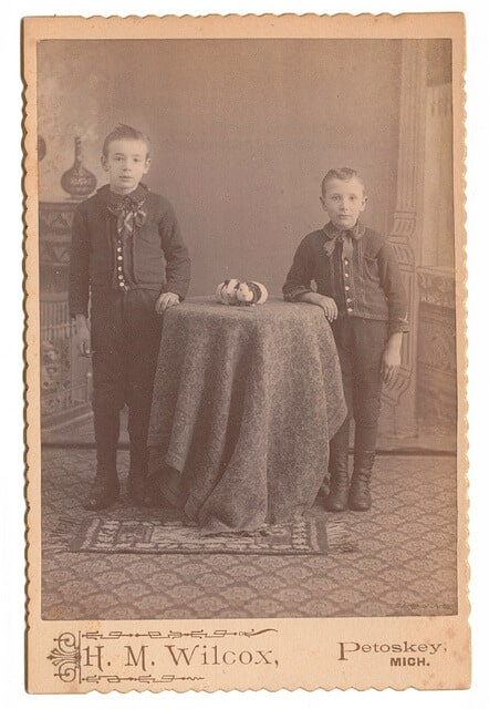 Victorian boys with their pet guinea pigs