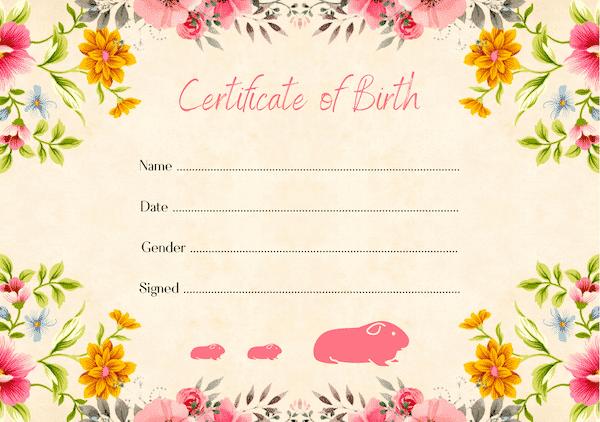 guinea pig birth certificate - floral design