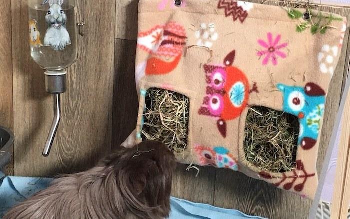 Fleece guinea pig hay feeder